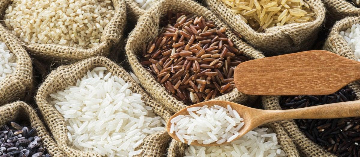 avis cuiseur à riz